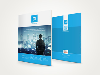 Brochure DI Consulting