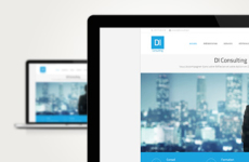 Site DI Consulting